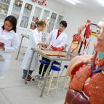 Laborat�rio de Anatomia, Neuroanatomia e Patologia